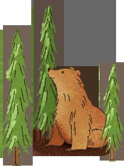 Cute Bear in the Woods